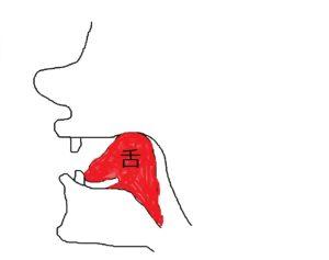 やり方 の 巻き 舌